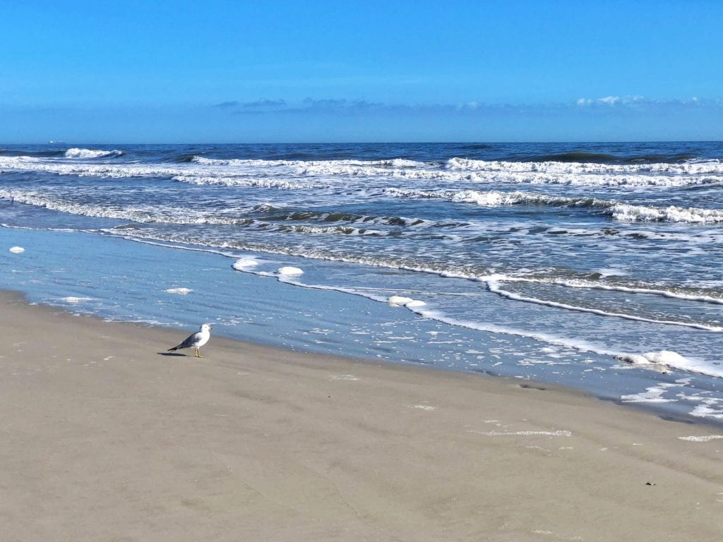 Best Beaches in Jacksonville Florida